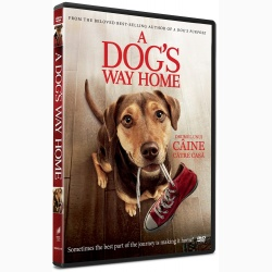 Drumul unui caine catre casa / A Dog's Way Home - DVD