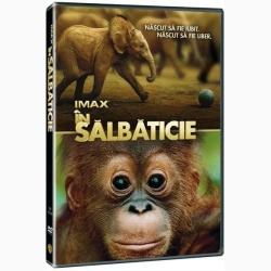 IMAX: ÎN SĂLBĂTICIE / IMAX-BORN TO BE WILD - DVD