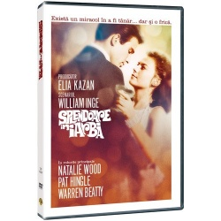 SPLENDOARE ÎN IARBĂ / SPLENDOR IN THE GRASS - DVD