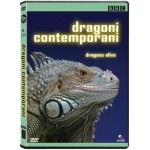 DRAGONI CONTEMPORANI